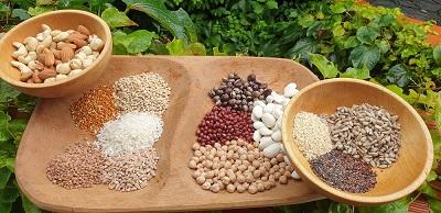živila, ki vsebujejo veliko beljakovin